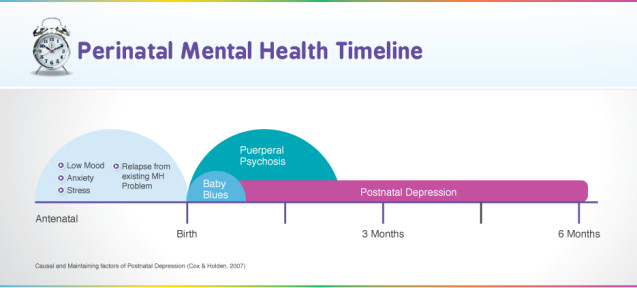Perinatal Mental Health Timeline