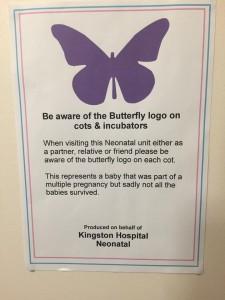 butterflysticker